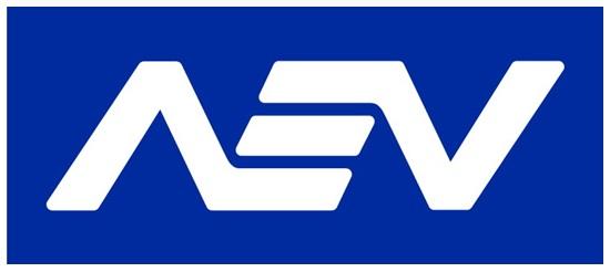 Resumen del 5° Coloquio Anual de la AEV